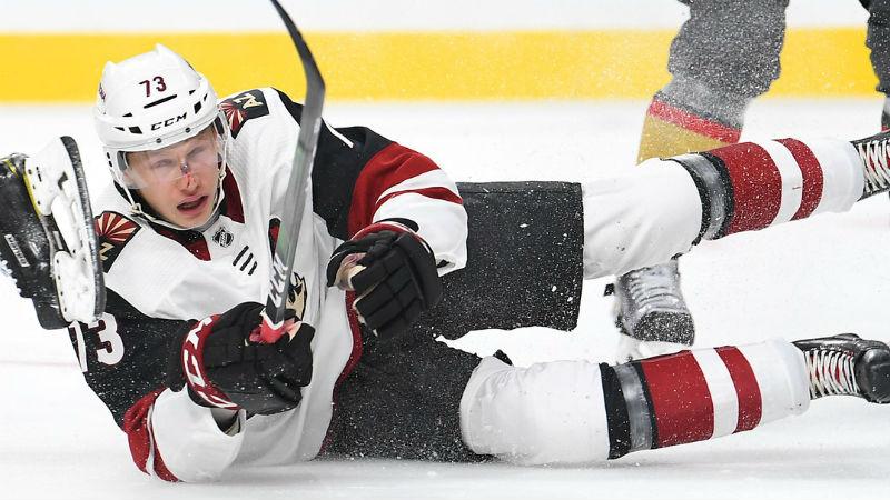 Narozeniny, bitka a nahrávka. Takhle dříč Jeník bojuje v Arizoně o NHL!