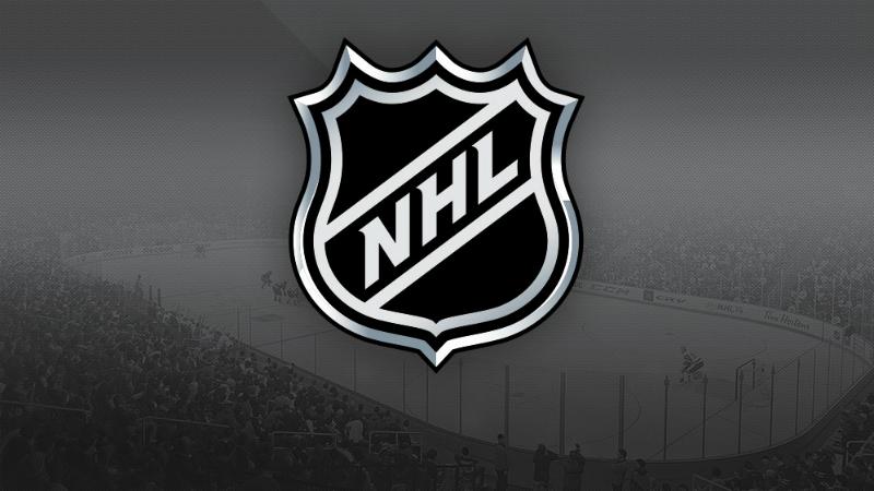 Přiřadíš správně název ke klubu NHL?